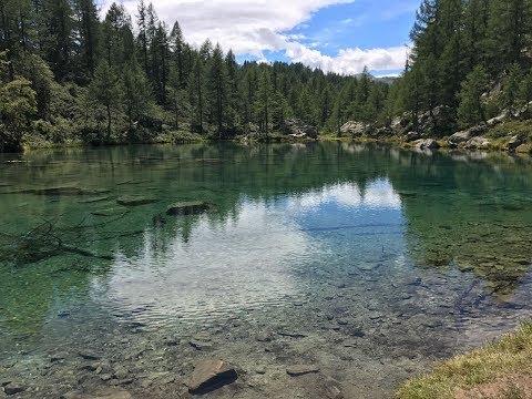 La nutrizione su per pescare sul piccolo fiume