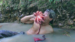 หาปลาหมึกยักษ์ ในป่าลึก เอาชีวิตรอด 1 วัน - dooclip.me