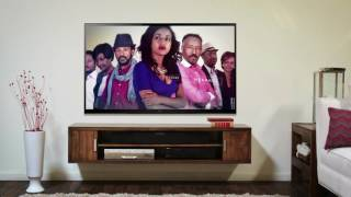 How to install EBS TV on ROKU