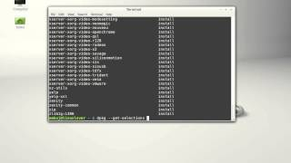 See the list of installed packages in Linux Mint/Ubuntu using command line