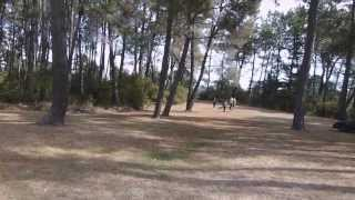 preview picture of video 'The Super Six at Spa Park, Taupo - NZ Disc Golf National Tour 2013'