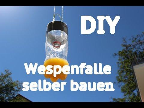 DIY Gartentipp: Wespenfalle selber bauen