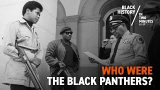 The Birth of the Black Panthers