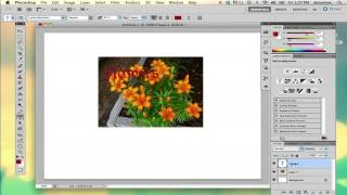 How to Bring Text in Front of a Photo in Photoshop : Adobe Photoshop Basics