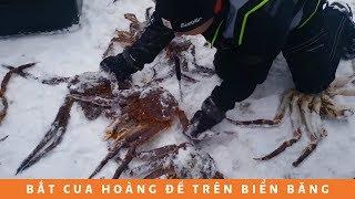 Đặt bẫy bắt cua hoàng đế Alaska trên biển băng | How to catch King Crabs on Sea Ice