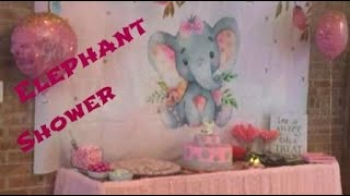 Scarletts Pink Elephant Baby Shower
