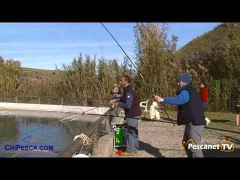 I cercatori di profondità sonici per pescare di pescatore 145