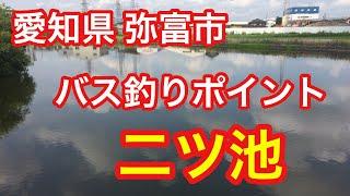 二ツ池愛知県弥富市穴場バス釣りポイントブラックバス