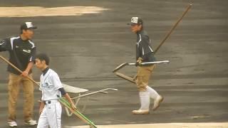 阪神タイガース2017CS/阪神園芸さんの頑張りを見てると泣けてきます2017.10.15