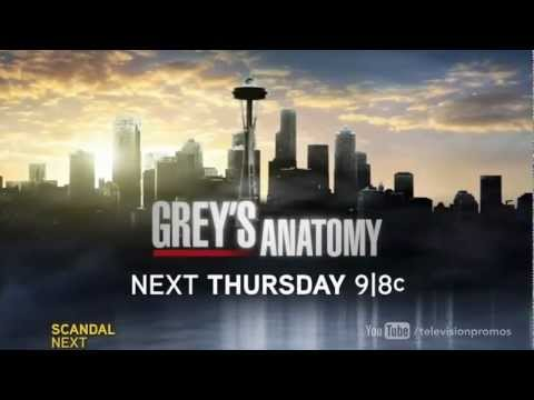 Grey's Anatomy 9.17 (Preview)