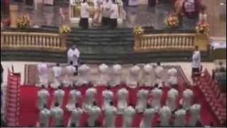 Vídeo any sacerdotal (2): Donar gracies a Déu pels sacerdots