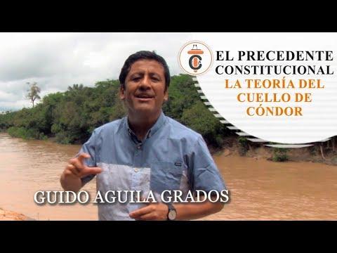 EL PRECEDENTE CONSTITUCIONAL - LA TEORÍA DEL CUELLO DE CÓNDOR - Tribuna Constitucional 92 - Guido Aguila Grados