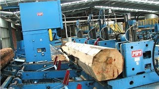 EXTREME Automatic Wood Sawmill Machine Modern Technology - Fastest Wood Cutting Machines