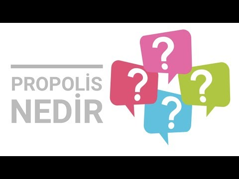 Propolis nedir, nasıl kullanılır? Propolis faydaları nedir? Nereden alınır?