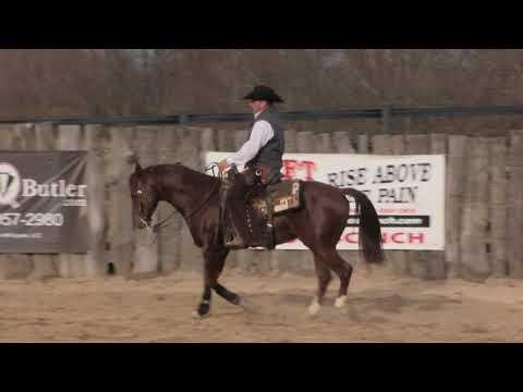 Counterflexing Helps our Horse - Steve Lantvit Sneak Peek