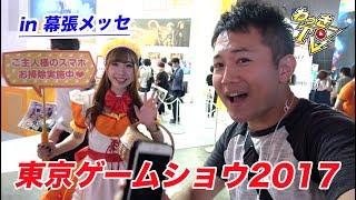 東京ゲームショウ2017を色々見てきた!TGS