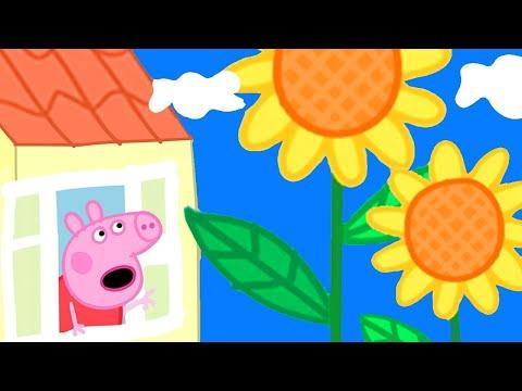 , title : 'Peppa Pig Français 🌼 Des Fleurs Géantes Dans Le Jardin De Peppa 🌼 Dessin Animé Pour Bébé