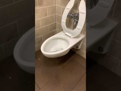 The water pressure on this toilet.