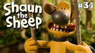 Download Video Shaun the Sheep - Hari Yang Panass [If You Can't Stand The Heat] MP3 3GP MP4