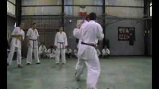 Gambar cover Shinseikai Karate Video Tecnica-Contrattacco Ushiro Geri