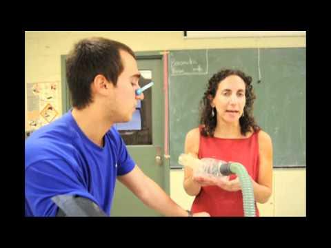 Les exercices sur les muscles du ventre de vidéo