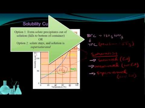 Exit Interview on Concentration and Solubility