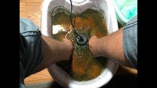 Guy Tries A Foot Detox