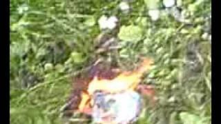 james healey the fire starter !!!