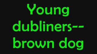 Young dubliners~brown dog+lyrics