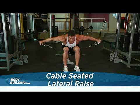 Cable Seated Lateral Raise   Exercise Videos & Guides   Bodybuilding com