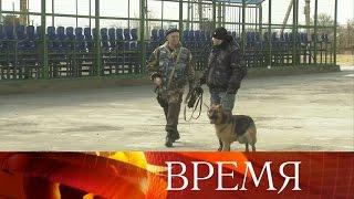 Все подразделения Росгвардии наСеверном Кавказе приведены всостояние повышенной готовности.