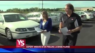 NYS Peeling License Plates Investigation