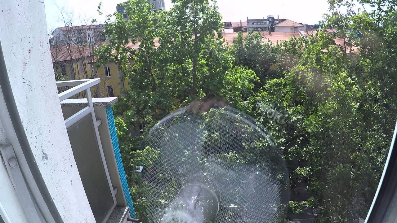 Two large rooms for rent just moments away from Bocconi University and Porta Romana