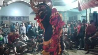 Rogo Samboyo Putro Lagu Sunpuji & Cinta Tak Harus Memiliki Live Blimbing Tarokan
