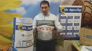 Подсолнечник РИМИ под евролайтинг, 113 дней, ИМИ, Засухоустойчивый и урожайный гибрид 42 ц/га. от компании ТД «АВС СТАНДАРТ УКРАЇНА» - видео