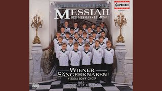 Messiah, HWV 56: Part I: Accompagnato: Thus saith the Lord of Hosts (Bass)