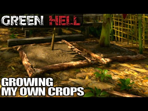 Planting my Own Crops | Green Hell | Let's Play Gameplay | E03