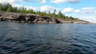 Рыбалка на ладожскому озере у приозерска