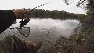Какой фидер нужен для ловли на десне
