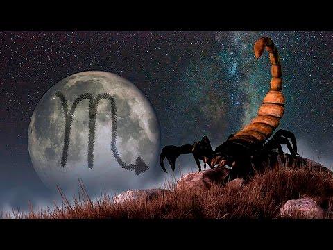 Фрэнк синатра гороскоп