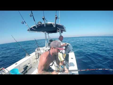 Pescando in contatto di una fotografia
