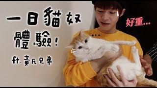 【黃阿瑪的後宮生活】一日貓奴體驗!ft.@黃氏兄弟