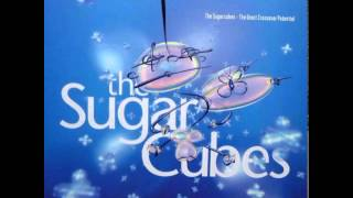 09 Water / The Sugarcubes - The Great Crossover Potential