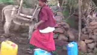 preview picture of video 'Collecting water at Ras Mulugeta spring'