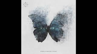 Kygo & Chelsea Cutler   Not Ok (Official Audio)