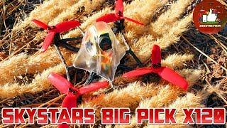 ✔ FPV Квадрокоптер - Skystars Ghost Rider Big Pick X120 под 4s!