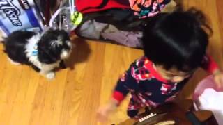 20month old jammin with daddy- Horse with no name