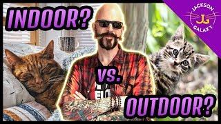 Indoor Cat Vs. Outdoor Cat?
