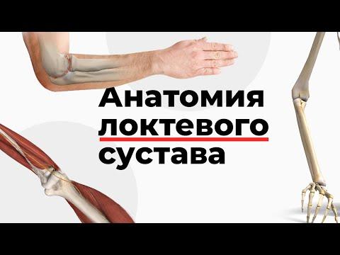 Чем снять боль при воспалении суставов