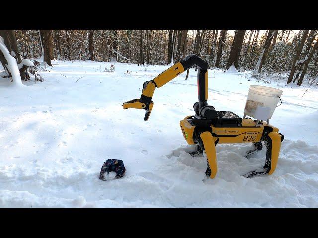 Boston Dynamics выпустила ролик о том, как робопес Spot наслаждается жизнью